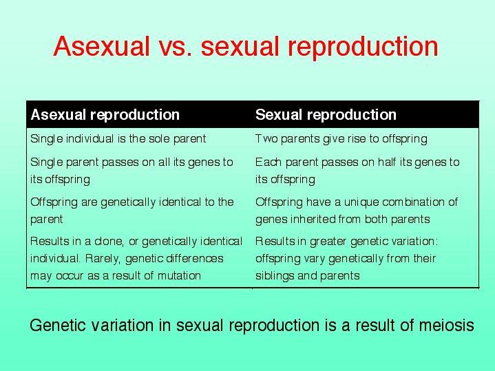 How do asexual and sexual reproduction compare and contrast